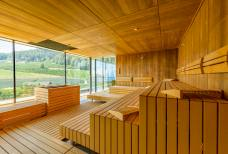 Alpiana Resort - Panorama Sauna